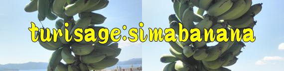島バナナ通販・販売