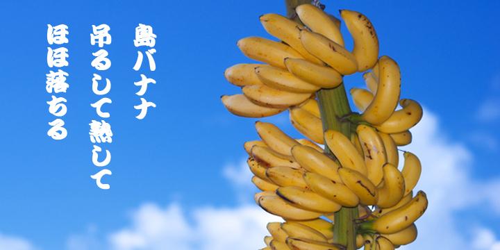 島バナナロゴ