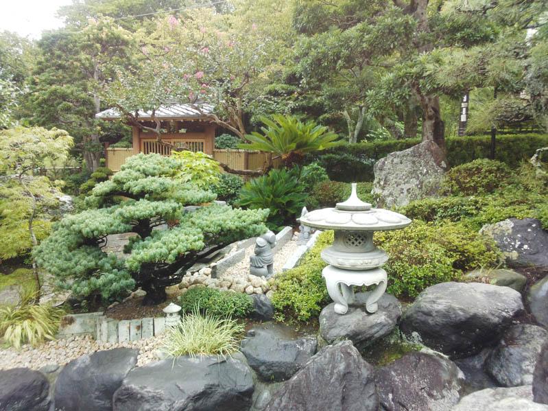 庭の風景8