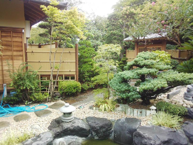 庭の風景7