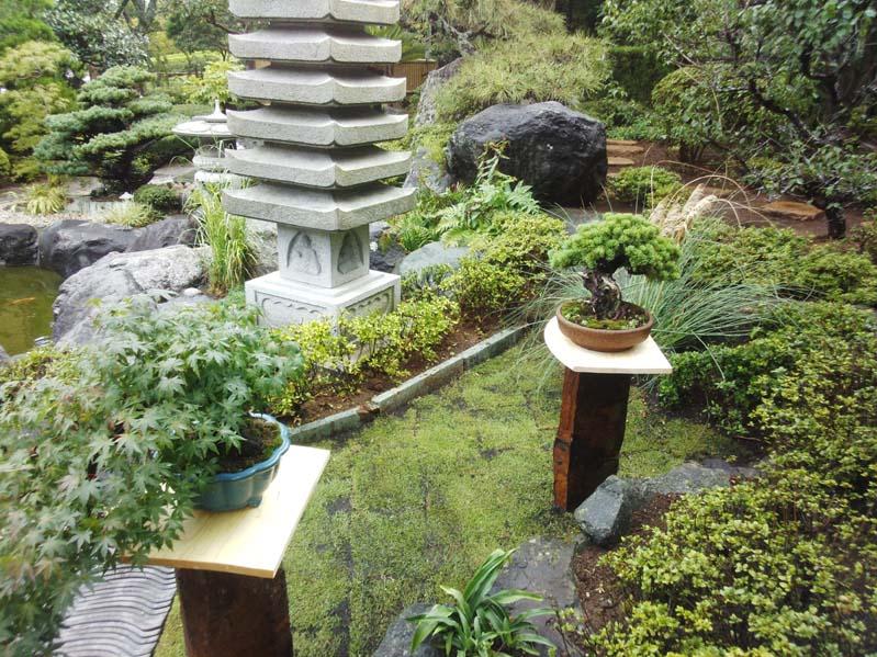 庭の風景6