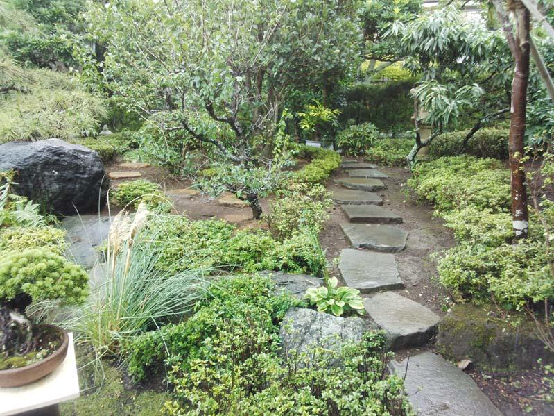 庭の風景4