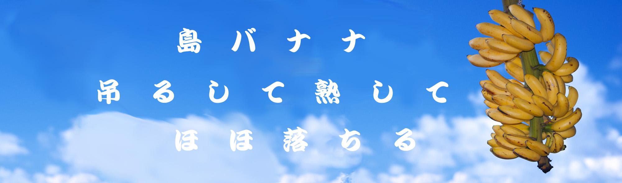 2017年ロゴ