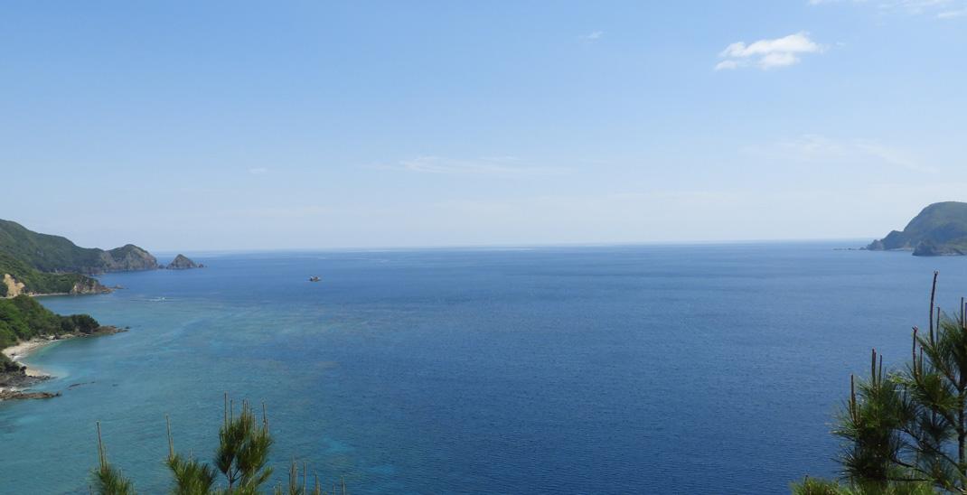 網野子から見る水平線